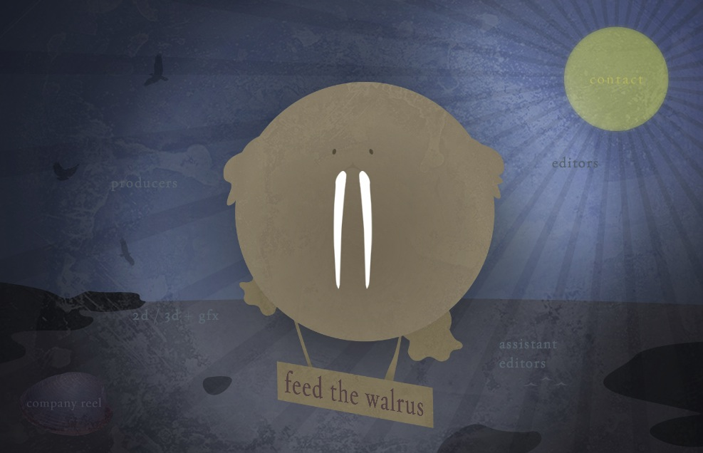 feed the walrus